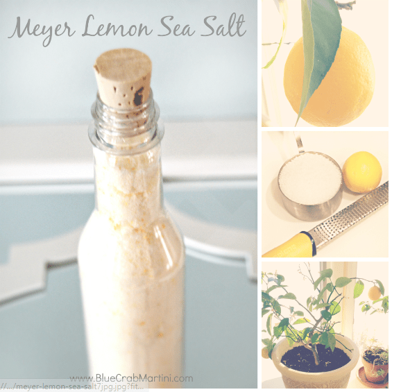 Meyer Lemon Sea Salt