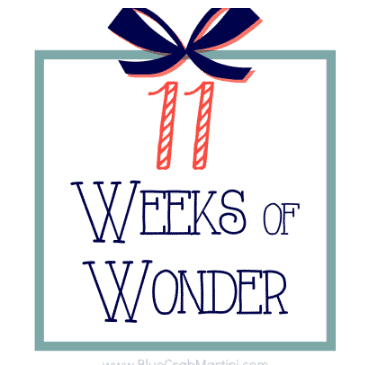 11 Weeks of Wonder #2- The Old Fashioned Holiday