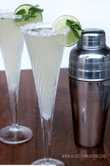 11 Weeks of Wonder #11- The Fizzy Mojito